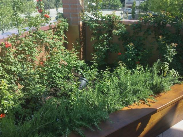 Pensile Su Terrazzo Arte Giardini