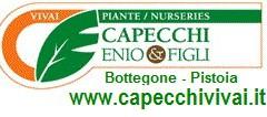 logoCAPECCHI